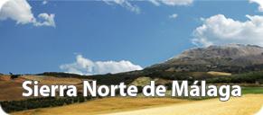Travel Rent Car Hire Faro Airport Reviews