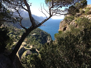 Mallorca west coast