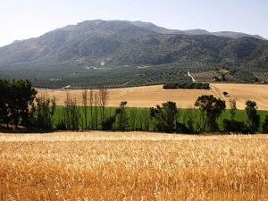 Sierra Norte Malaga